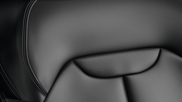 Renault KADJAR - Black leather