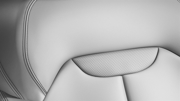 Renault KADJAR - White leather